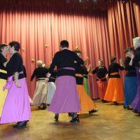 Plesna skupina Mavrica