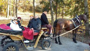 Uživanje v panoramski vožnji s kočijo